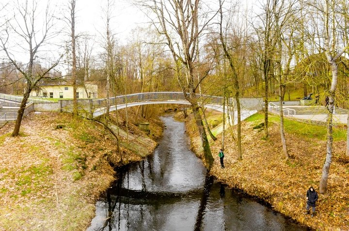 Curved Bridge