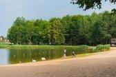 Vijūnėlės parkas