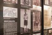 Muzeum Oporu i Zesłania w Druskienikach
